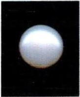Buy 7.25 Ratti Natural White Pearl (Moti) Online