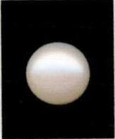 Buy 9 Ratti Natural White Pearl (Moti) Online